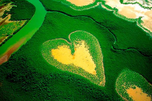Ejemplo de imagen de un corazón de esta colección
