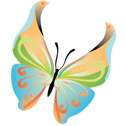 Colección de 14 bellas mariposas con diferentes colores