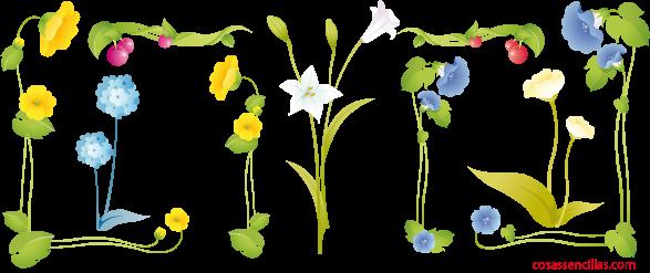 Conjunto de flores para combinar en un marco