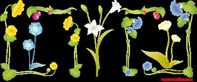 flower_frames