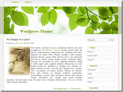 tema-wp-Refreshing